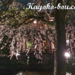 『京都のおいしいお店』 近江牛と宮王牛ステーキとワイン  ガーデンレストラン 1596(イチゴーキューロク)&使用美容器具【体重-800g】