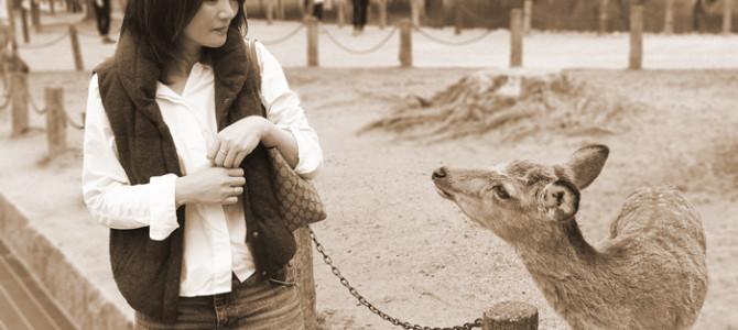 女子と男子の違いか?受験のことあれこれ&奈良の鹿さん。